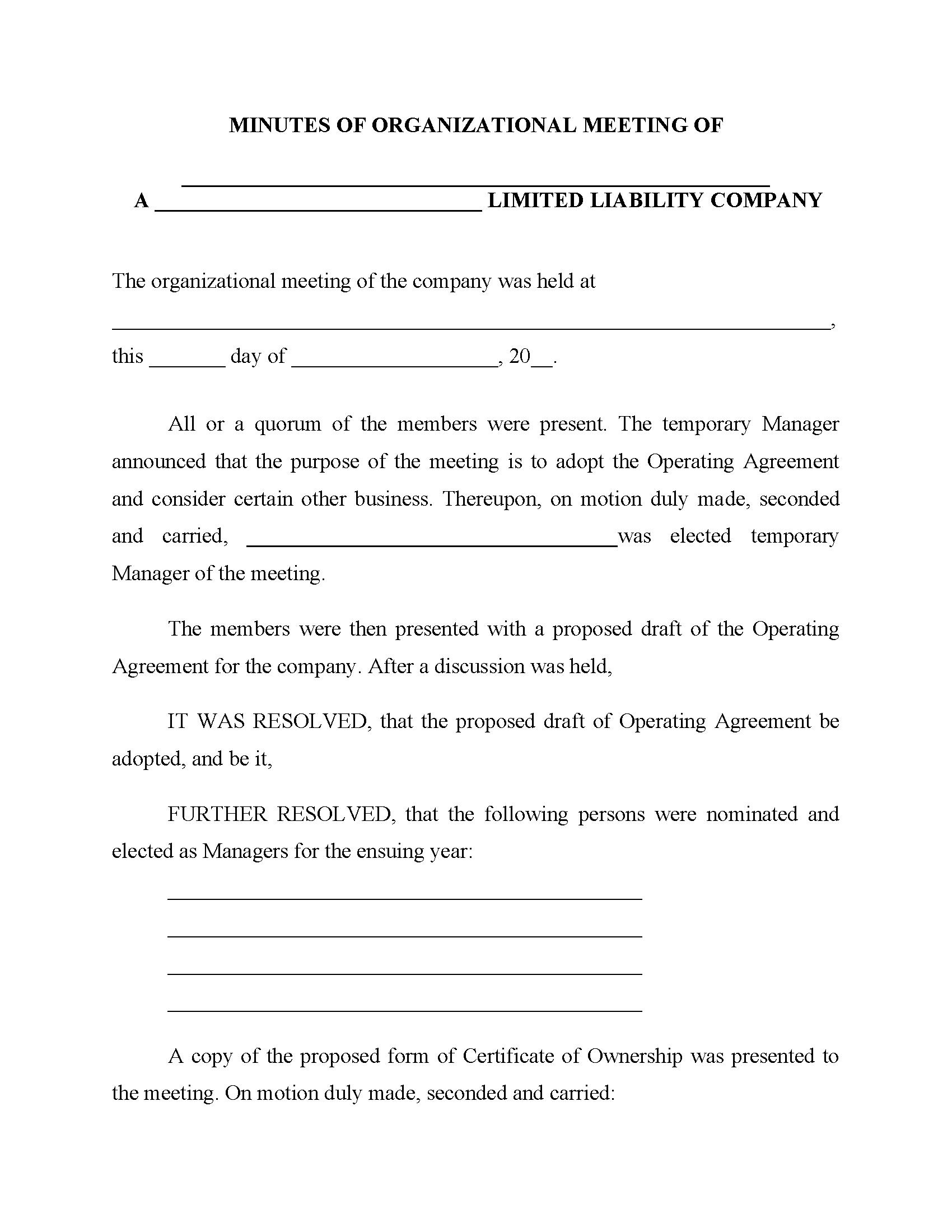 Minutes of LLC Organizational Meeting